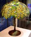 Laburnum library lamp by Louis Comfort Tiffany on bronze base at Corning Museum of Glass. Corning, NY.