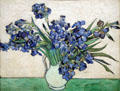 Irises by Vincent van Gogh at Metropolitan Museum of Art. New York, NY